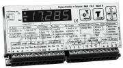 Весовая интеллектуальная платформа DAS 72.1 - фото