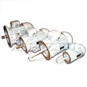 Двигатель асинхронный ДМР 160МА4-02 фото 1