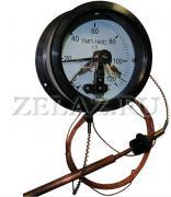 Термометры дистанционные ТМП-160 - фото