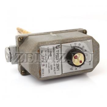 Терморегулятор ТУДЭ-2М1(Р) - фото